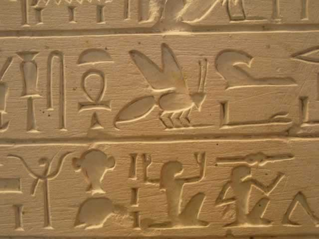 Hieroglyphs of Bee Hives have been found in Ancient tombs in Egypt