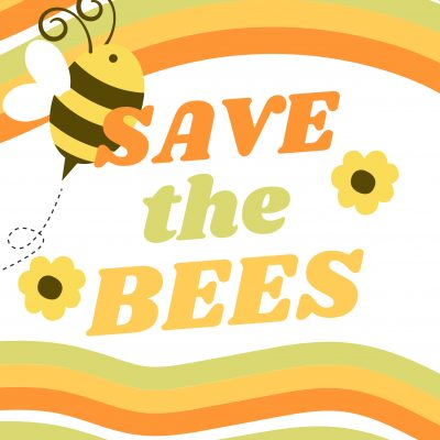 Bee numbers are declining and they need our help